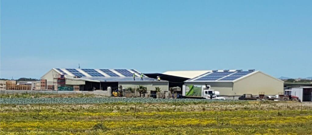 300kWp Agricultural PV System in Cape Town