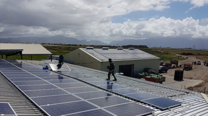 300kWp Agricultural PV System in Philippi