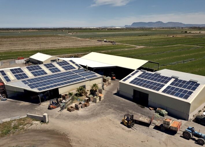 300kWp Agricultural Solar System in Philippi, Cape Town